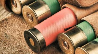 Охотничьи патроны и боеприпасы: классификация пуль и патронов. Виды и производители