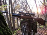 Пневматика для охоты без лицензии: как выбрать мощную пневматическую винтовку