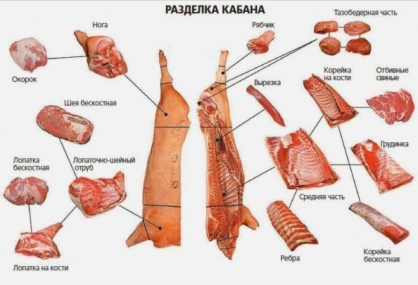 как приготовить кабанятину
