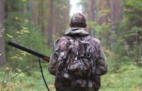 Охотники стали чаще нарушать закон | «Новости Коломны»