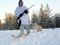 Охотничьи лыжи пластиковые или деревянные: как сделать своими руками лыжи на охоту
