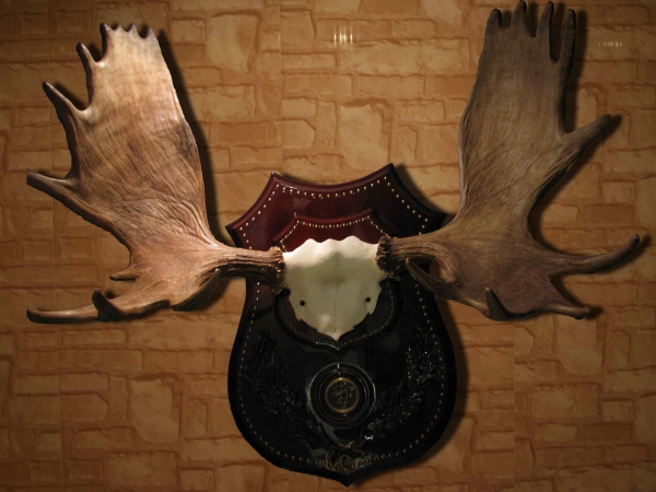 медальон для рогов