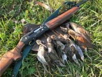 Охота на бекаса или дупеля - сезон и методы: с легавой, самотопом, веревочкой
