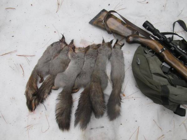 промысловая охота