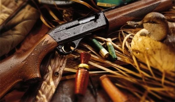 нарушение правил охоты