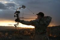 Блочный лук для охоты: как выбрать современный или сделать лук своими руками