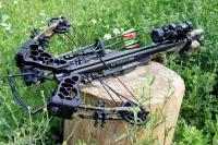 Как выбрать арбалет для охоты: разновидности, мощность, выбор материалов