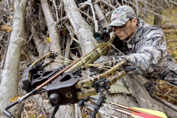 Арбалет для охоты – какой лучше выбрать: рекурсивный, блочный, пистолетного типа