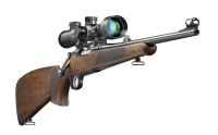 Мелкокалиберное оружие охотничье: выбор патронов, получение разрешения
