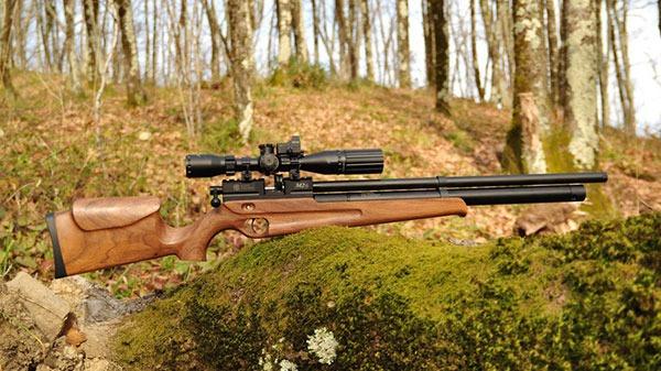 Охота с пневматикой на утку: выбор модели винтовки, калибра и пуль; тактика охоты