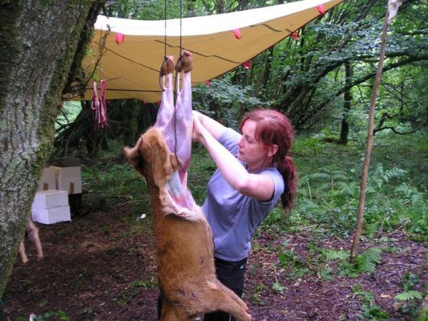 Как разделать лося, косулю, кабана, медведя: правила разделки туши – мясо и шкура
