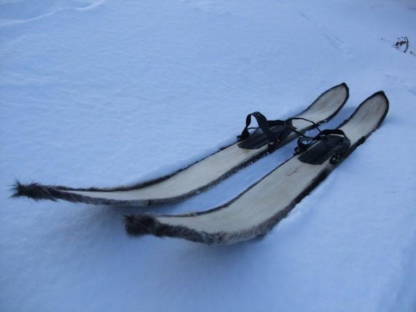 лыжи для охоты