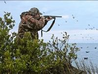 Упреждение при стрельбе по утке, гусю: как правильно стрелять по летящей цели