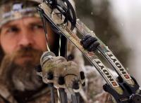 Охота с арбалетом на кабана, лося, утку, зайца – выбор модели и тактика стрельбы