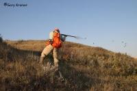 Охота на куропатку: разновидности и среда обитания, способы охоты и виды ловушек